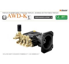 """Pompe AWD-K 3020 G à pistons triplex-Comet-G: Ø 1""""-Ref: 65210150"""